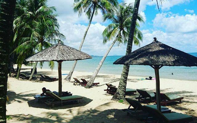 Coco Palm Lounge