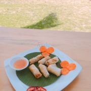 Dolphin spring roll