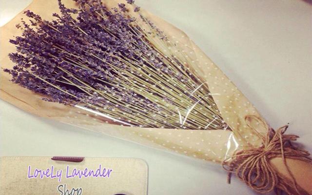 Lovely Lavender Shop - Hoa Lavender Khô