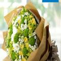 Bó hoa cúc 023