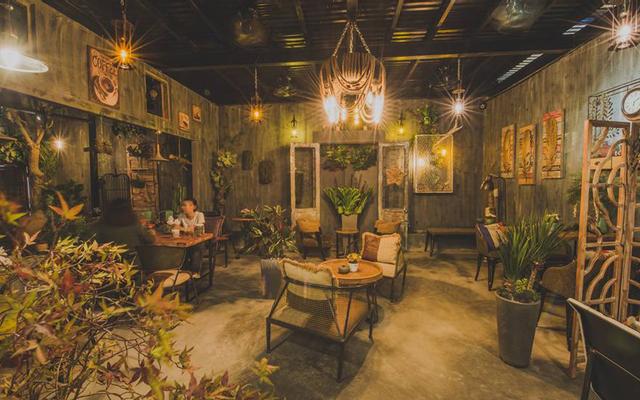 Jungle Coffee