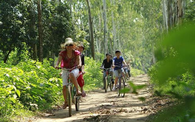 Khu Cắm Trại Dã Ngoại SonTinh Camp