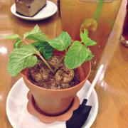 Chocolate mousse và trà quất
