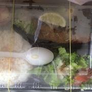 Hộp cơm rõ ràng là cá