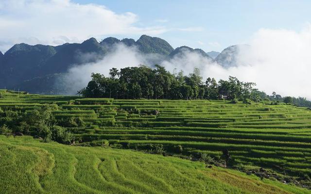 Hoanh Homestay - Pù Luông