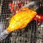 Cá bò đá nướng 19k100/ gam