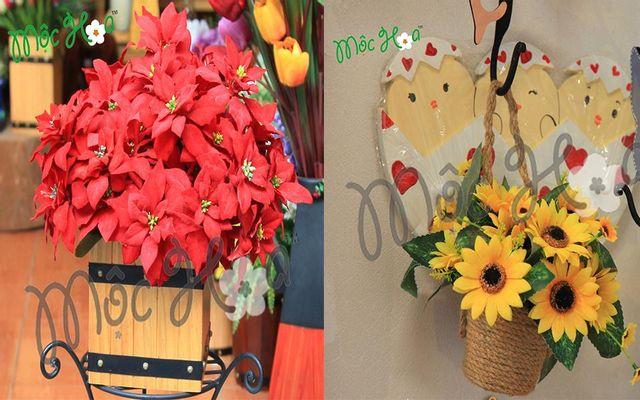 Mộc Hoa - Shop Hoa Trang Trí