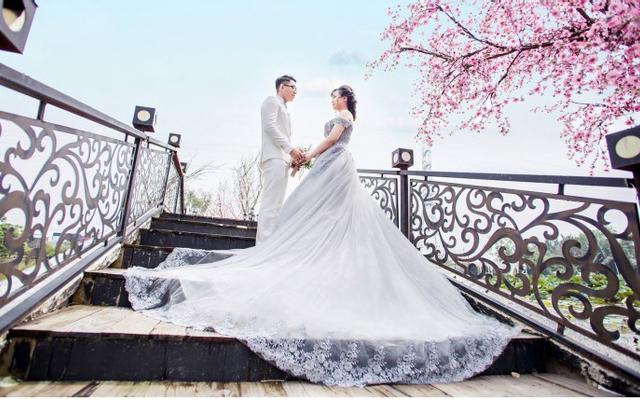 Lucid - Wedding Studio