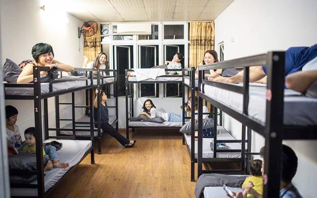 Meow Hostel