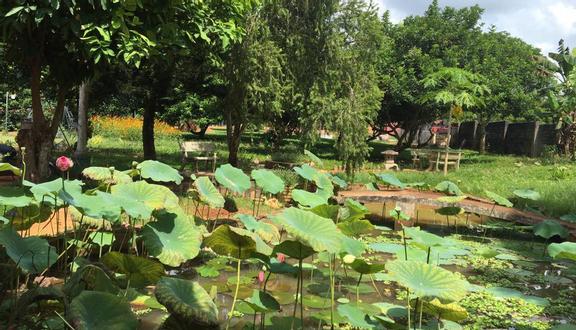 Nông Trại Ngọc Hân