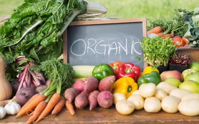 Organicfood.vn - Siêu Thị Thực Phẩm Hữu Cơ - Trần Não