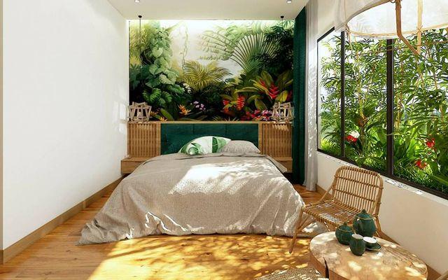 Animor Green Home