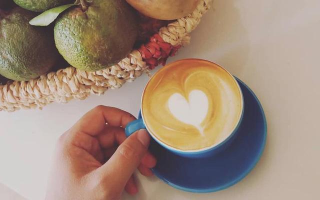 Populus Coffeezone