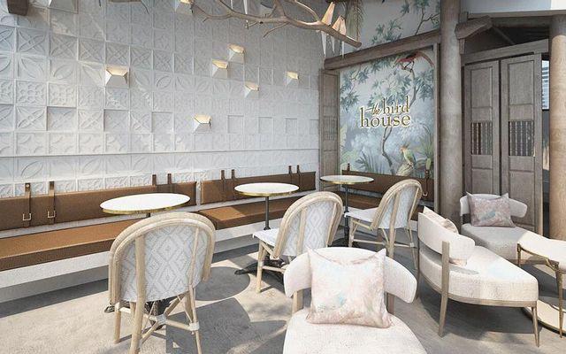The Bird House - Cafe & Boutique