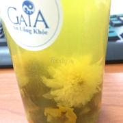 Trà hoa cúc dịu mát