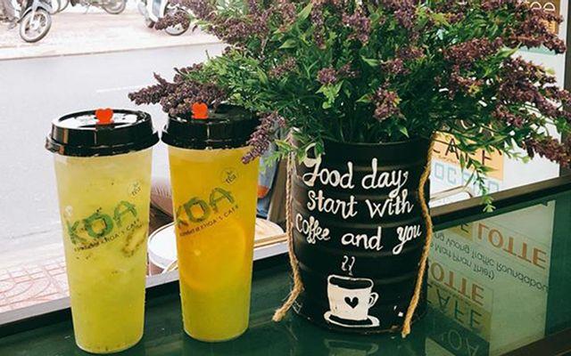 Koa Tea & Coffee House - Tuyên Quang