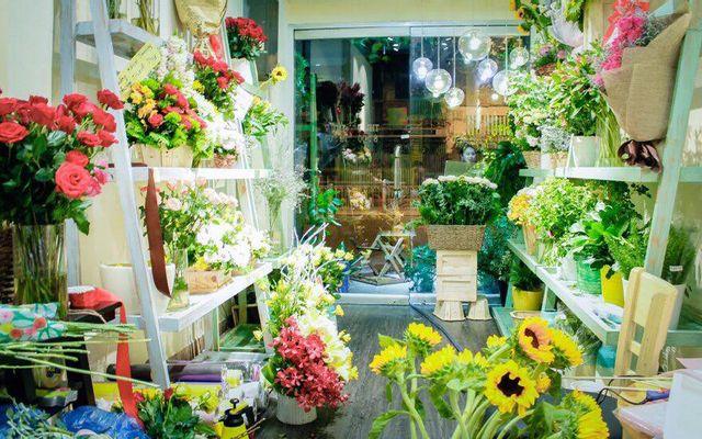 My Flower - Shop Hoa Tươi Sài Gòn