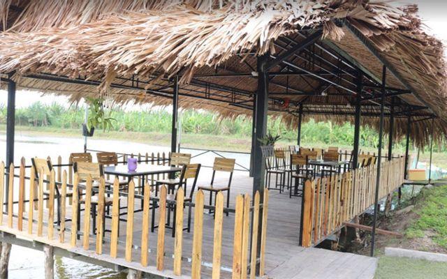 Ngô Đồng - Vườn Sinh Thái