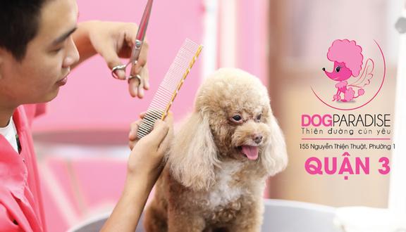 DogParadise - Cửa Hàng Thú Cưng - Nguyễn Thiện Thuật