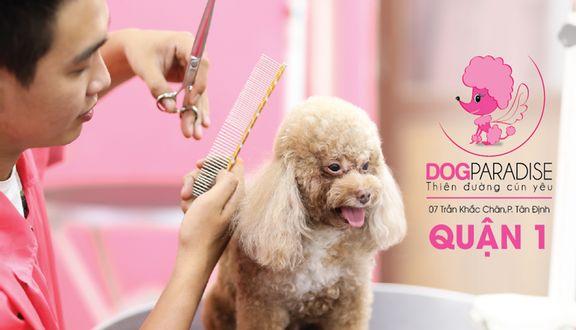 DogParadise - Cửa Hàng Thú Cưng - Trần Khắc Chân