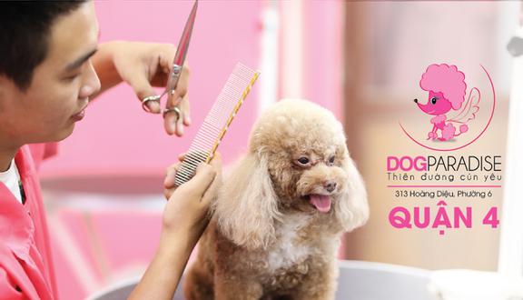 DogParadise - Cửa Hàng Thú Cưng - Hoàng Diệu