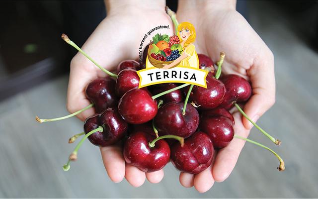 TERRISA Direct - Trái Cây Nhập Khẩu