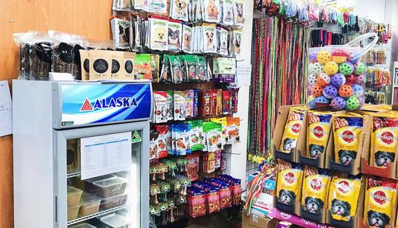 Pet's Home - Shop Thú Cưng - Hoa Hồng