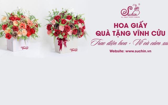 Hoa Giấy Suchin - Trường Chinh