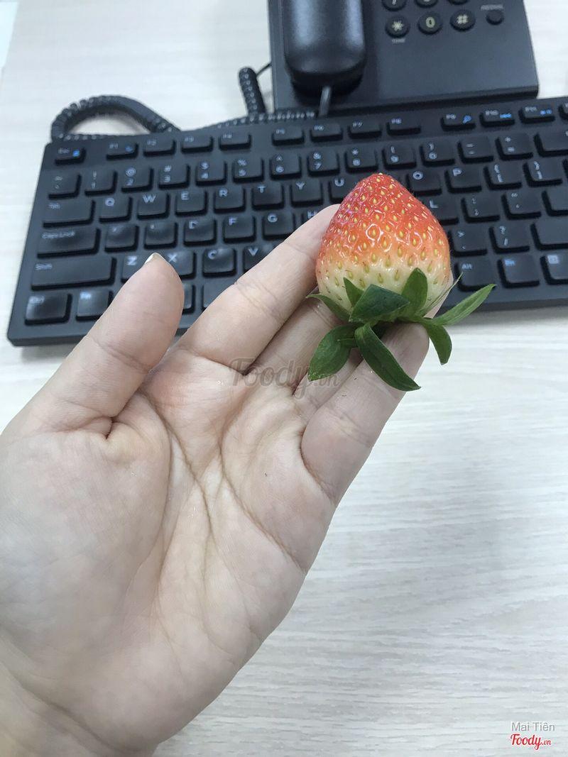 Kích thước size A?