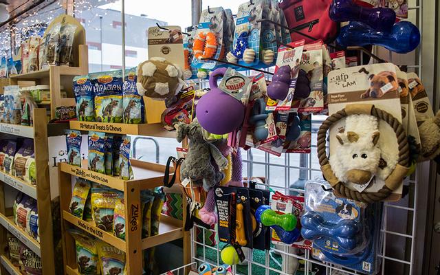 Pet's Home - Shop Thú Cưng - Rạch Bùng Binh