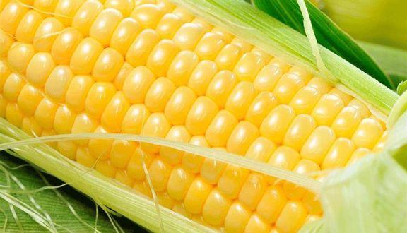 Bắp Nếp & Bắp Mỹ Hấp Sữa Tươi - Bùng Binh Trung Sơn