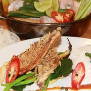 Combo cá điêu hồng 2 món (Lẩu và FIllet số Thái hay Gỏi)