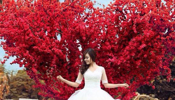 Love Garden - Khu Vườn Chụp Hình