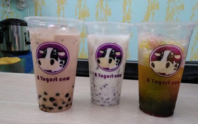 A Yogurt Cow - Trà Sữa & Nước Ép Trái Cây