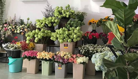 Tâm An - Shop Hoa Tươi