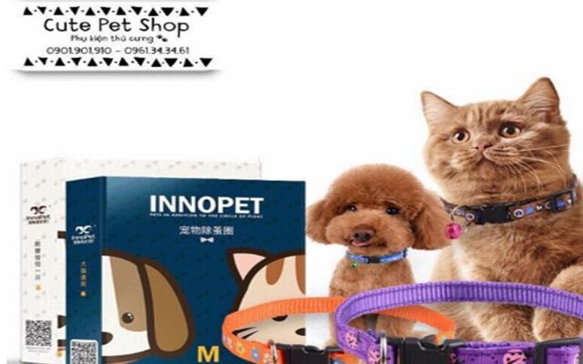 Cute Pet Shop -  Bình Tân