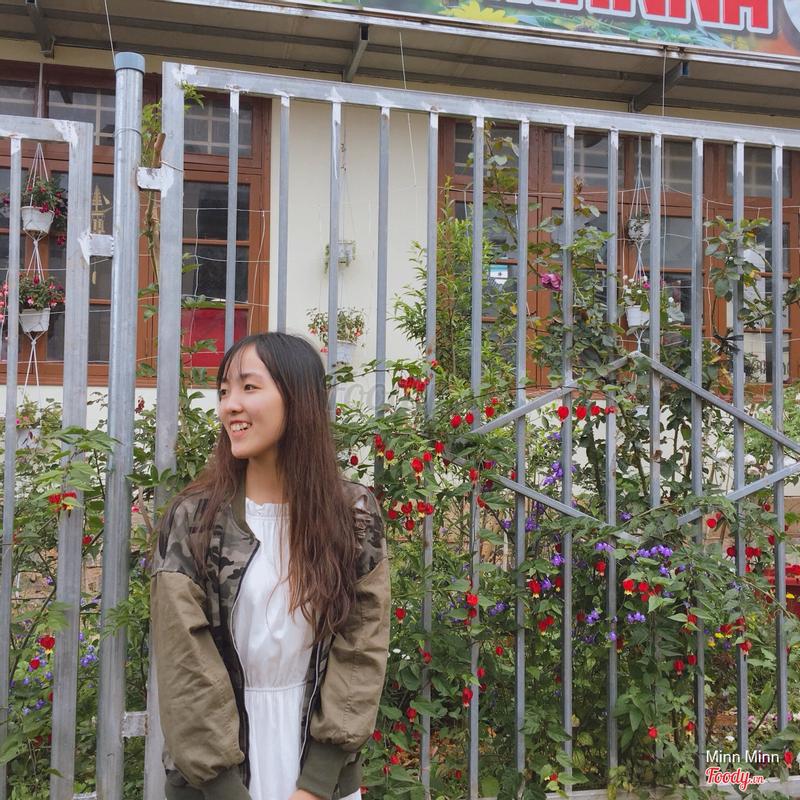 Hàng rào cô đang trồng hoa. Đợi mấy bé nở thêm xíu là tha hồ chụp ảnh đẹp nhaaa