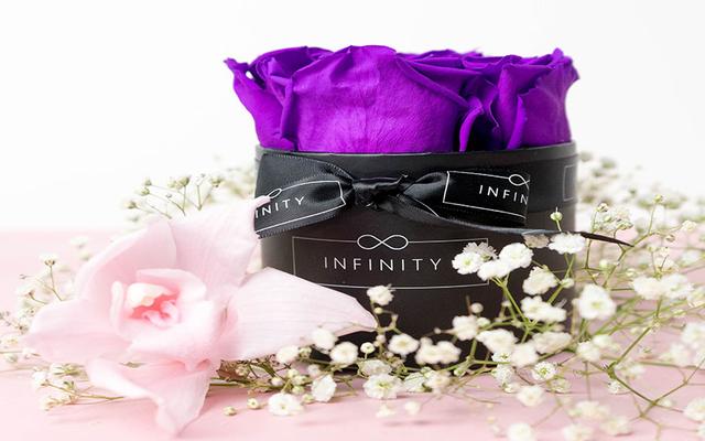 Infinity Hoa Vĩnh Cửu - Tôn Đản