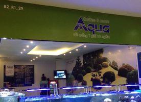 AQua Coffee & More - Royal City