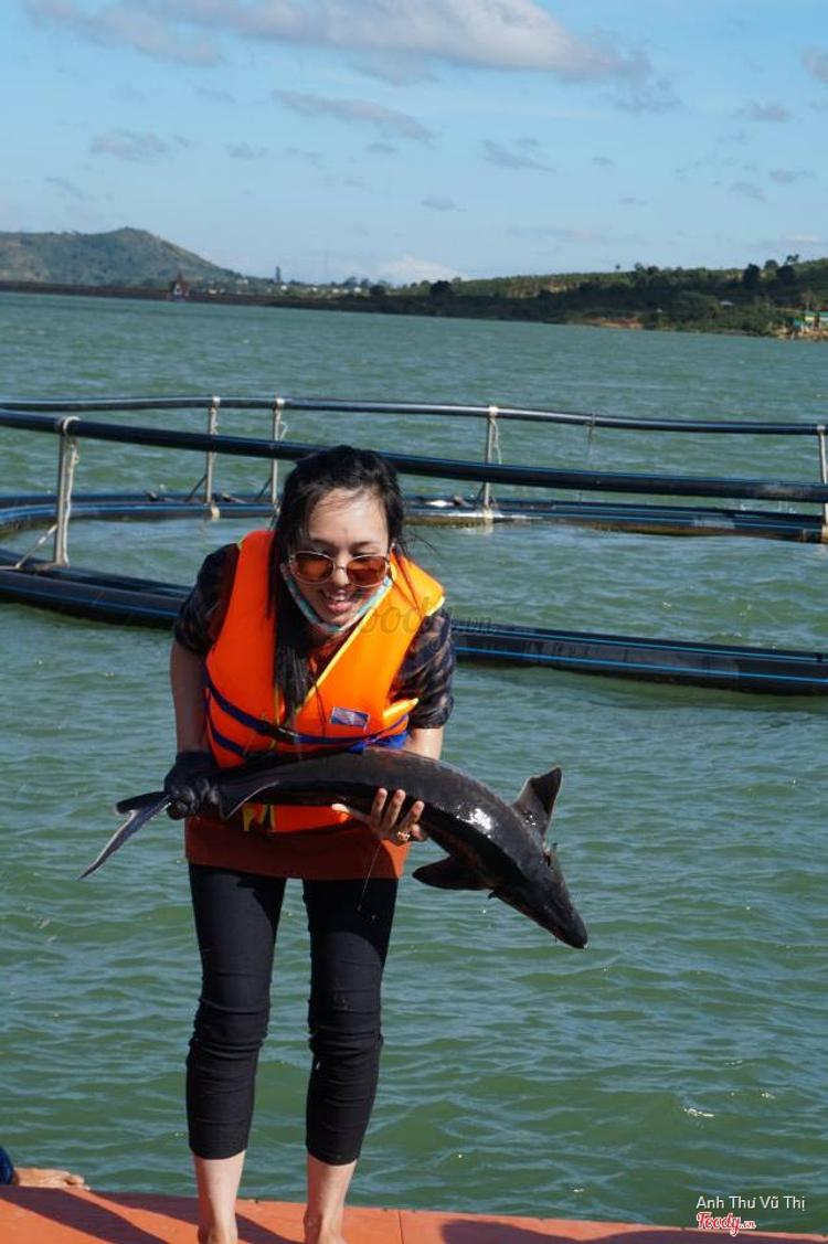 Cá Tầm KLA - Bạch Đằng ở TP. HCM