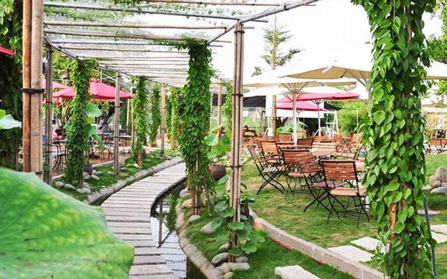 New Garden Cafe