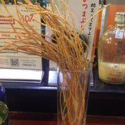Mỳ spagetty sấy khô
