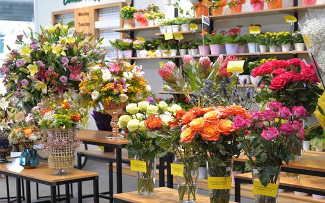 Dalat Hasfarm Flower Shop - Tôn Dật Tiên