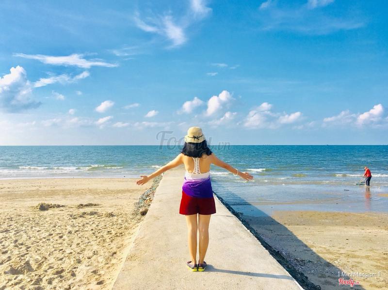 Con đê hướng biển