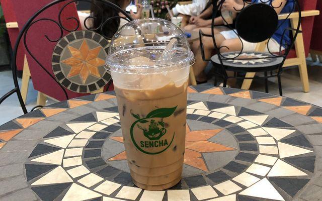 Sencha Tea - Trà Sữa Nhật - Đường D09
