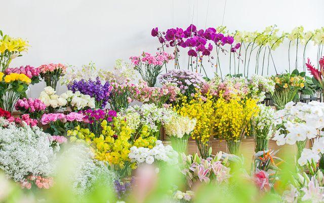 Dalat.Flowers - Võ Thị Sáu