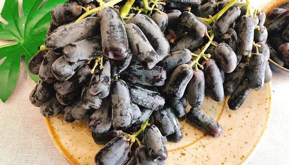 An Miên Farm - Trái Cây & Thực Phẩm Nhập Khẩu