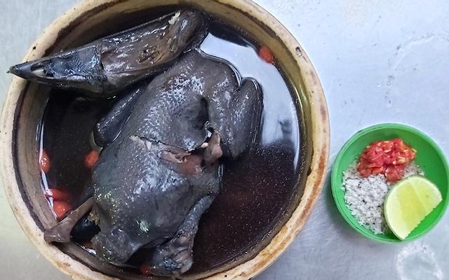 Gà Ác Thịnh Phát - Cây Keo