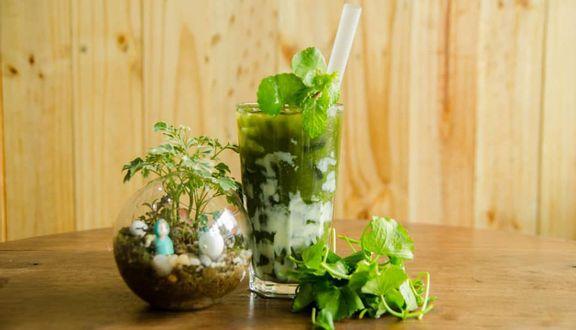 Hồ Nguyễn - Rau Má & Cơm Gà - Shop Online