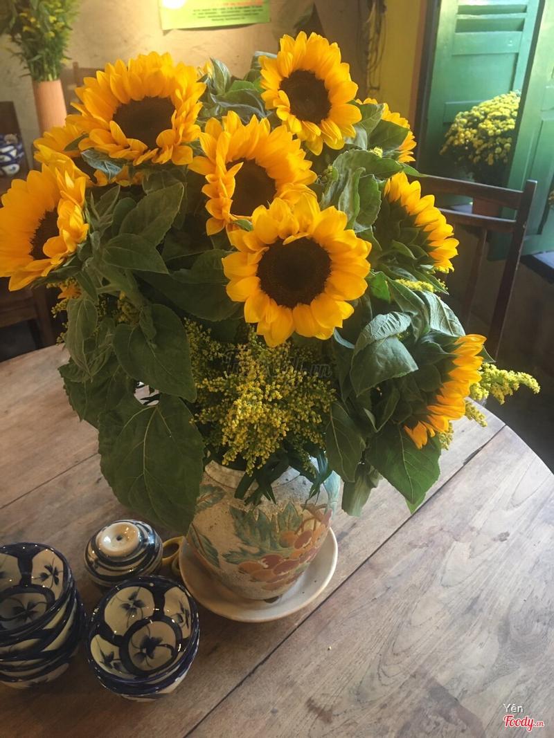 Quán trang trí hoa hướng dương !!!
